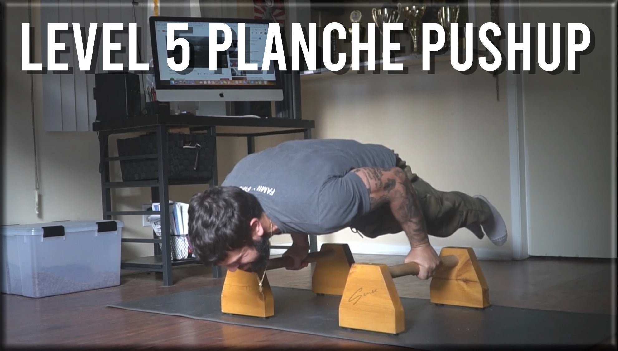 Level 5 Planche Pushup
