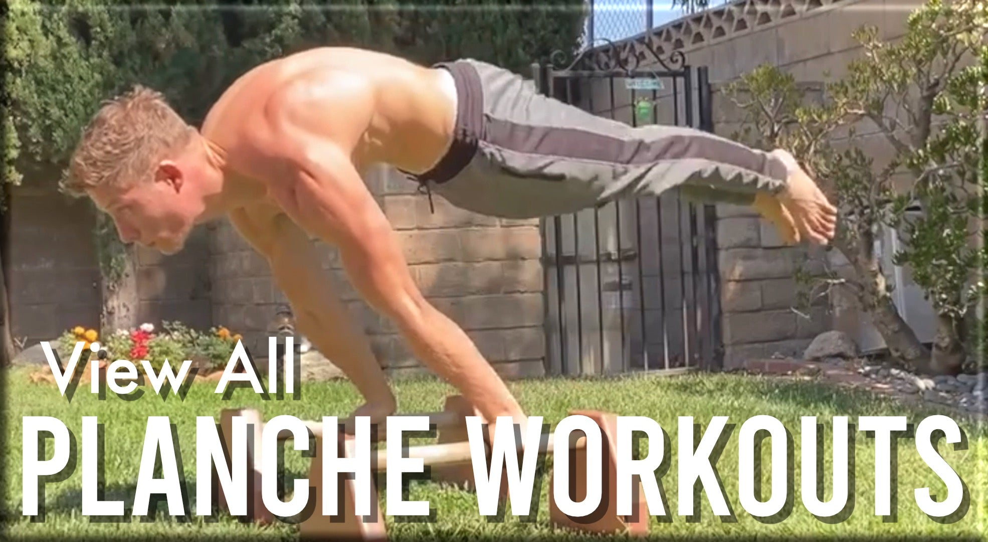 View All Planche Workouts