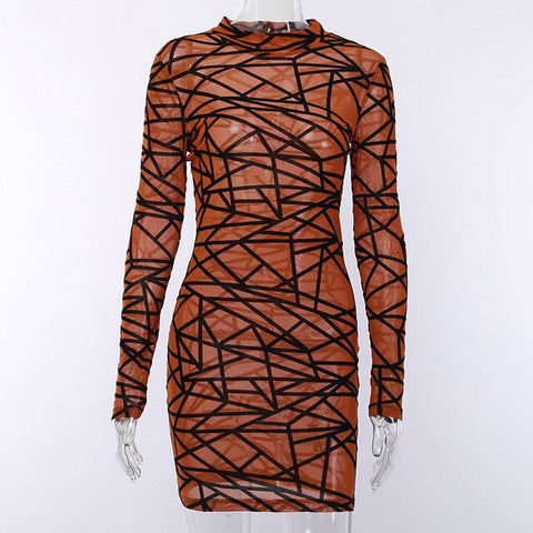 Mesh Pattern Print O Neck Dress