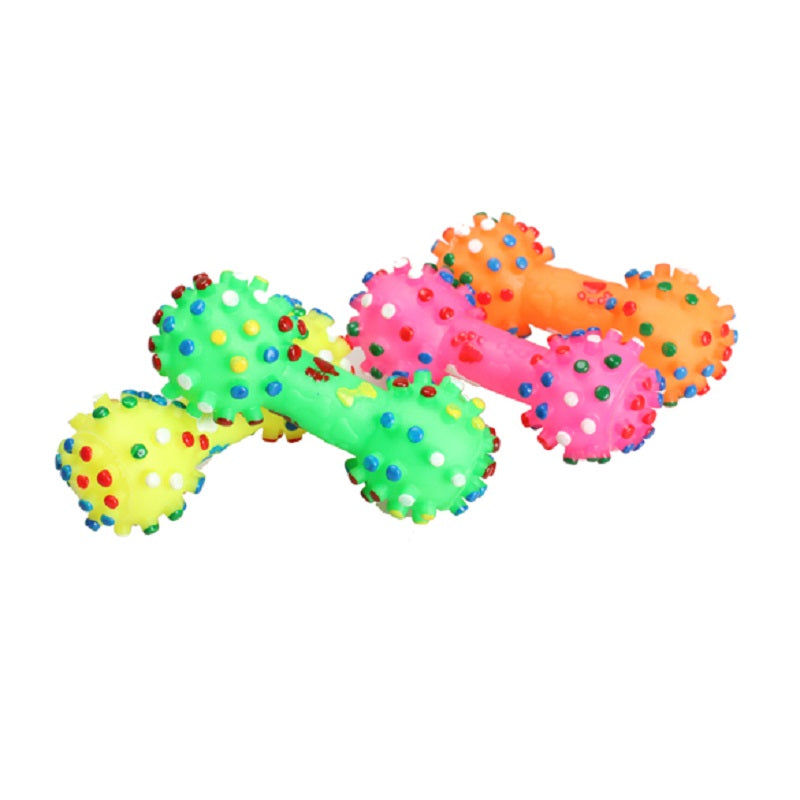 Colorful Squeaky Dog Toy