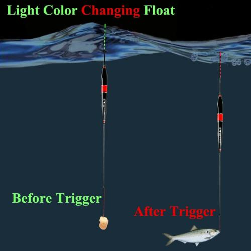 Smart Fishing Float