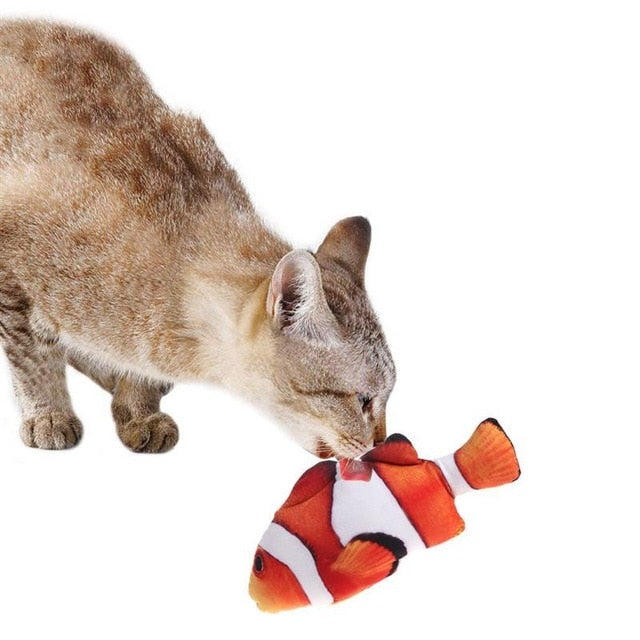 3D Cats Fish For Cat
