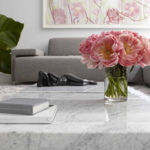 Marble Coffee Table Design, Style Ideas and Tips
