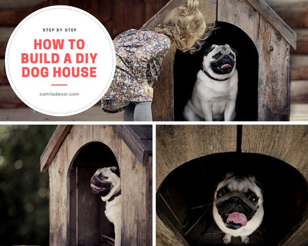 How to Build a DIY Dog House for Your Pet