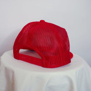 Minnesota Zoo Corduroy Snap Back Hat-NEWLIFE Clothing