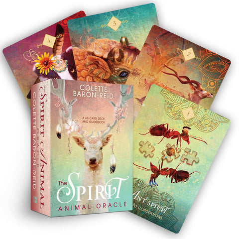 "box labeled ""spirit animal oracle."" cards depict various animals, such as ants, kudu, and armadillo"
