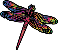 Rainbow Dragonfly Transfer 115mm x 98mm