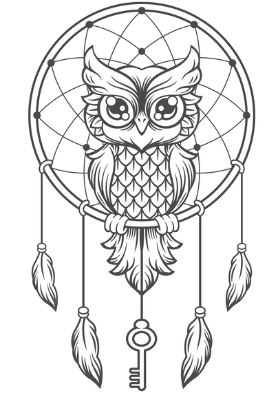 Grey Owl Dream Catcher Transfer