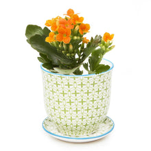Load image into Gallery viewer, Petite Flower Pot and Saucer