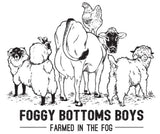 Foggy Bottoms Boys
