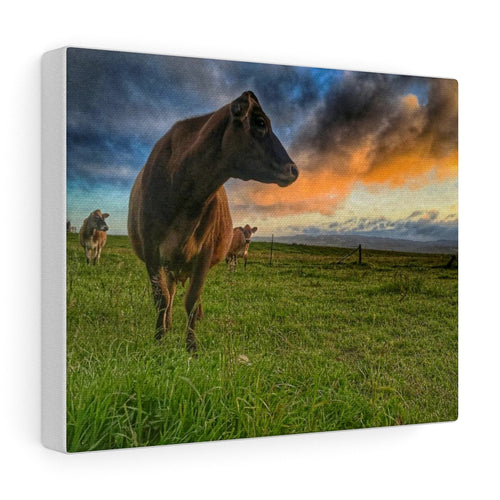 Jersey Sunrise Canvas Gallery Wraps