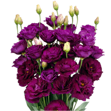 Load image into Gallery viewer, Lisianthus Assorted 400 Gram