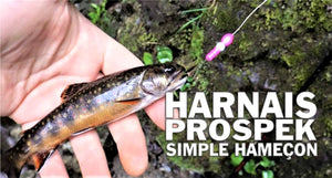 Brooktrout Simple hook Prospek harnais