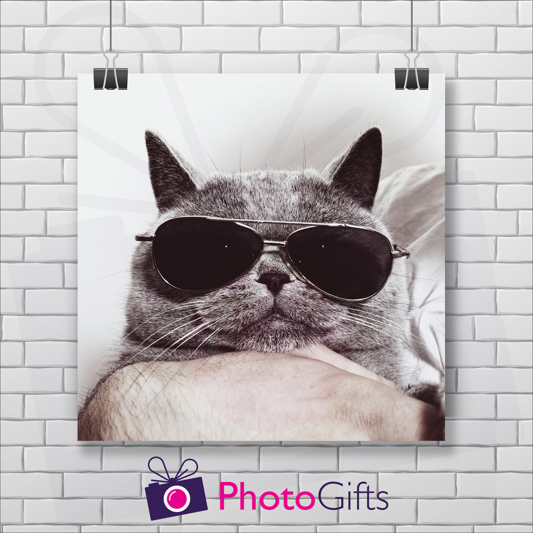 White painted brick wall with a square poster hanging from two clips. The poster is of the face of a grey cat with dark sunglasses on looking straight ahead. The cat looks to be held in a persons hand. As produced by Photogifts.co.uk