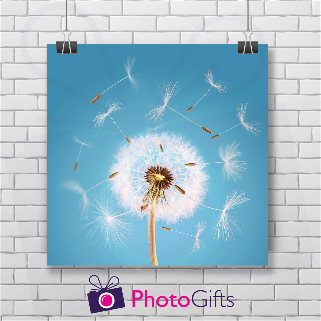 Square poster print with a close up shot of a dandelion seed head starting to come apart in the wind on a sky blue background. The picture is hung by two metal clips on a white painted brick wall. As produced by Photogifts.co.uk