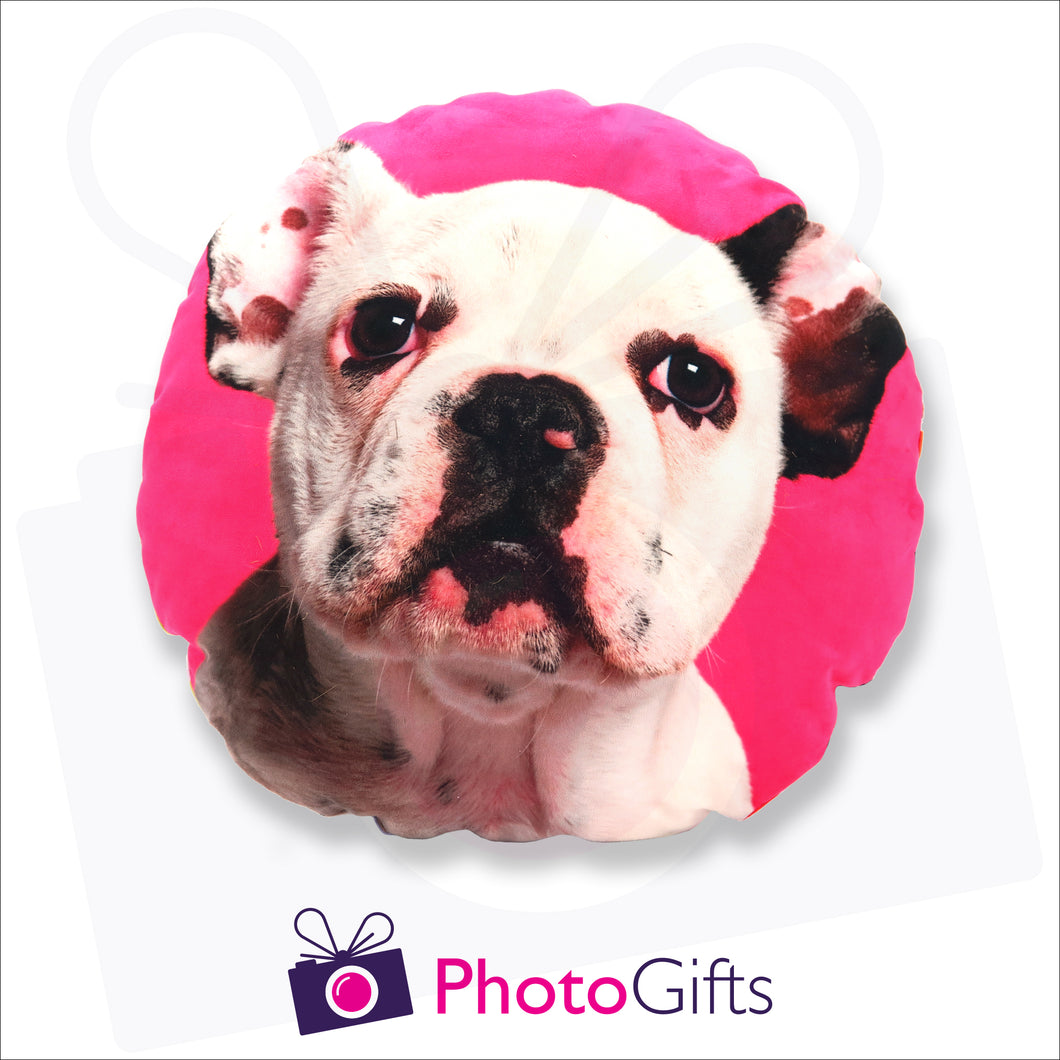 Personalised round cushion with your own choice of image on the cushion as produced by Photogifts.co.uk