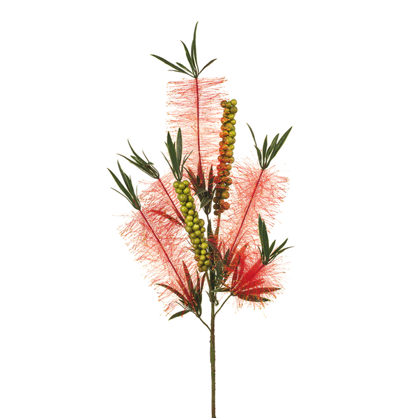 Bottlebrush Spray. Red. Single Stem. 81cm
