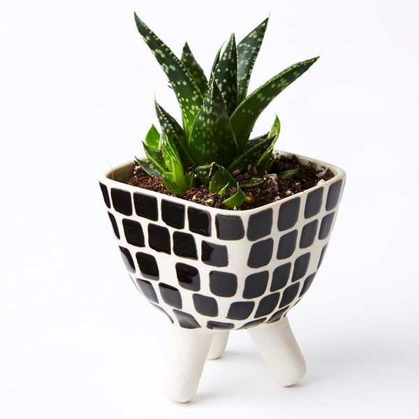 Tile Footed Mini Planter
