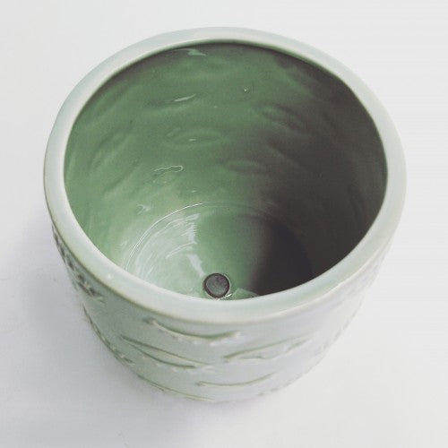 Eye Planter Mint 12cm