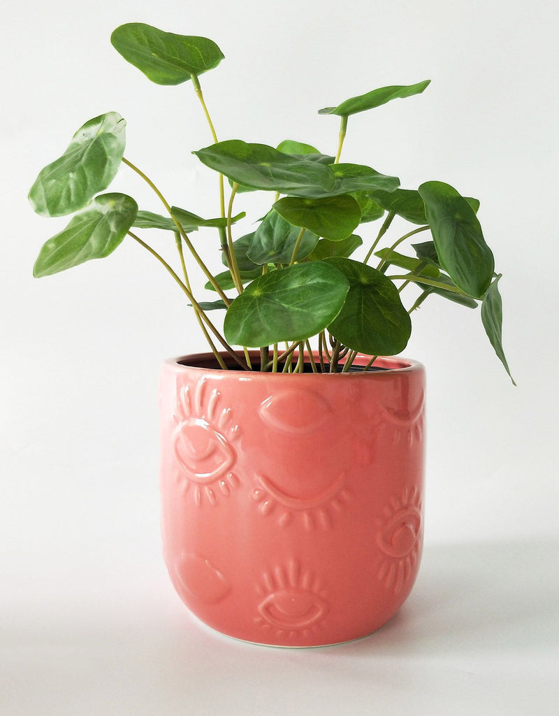 Elemental Eye Planter Pink Sm 11cm