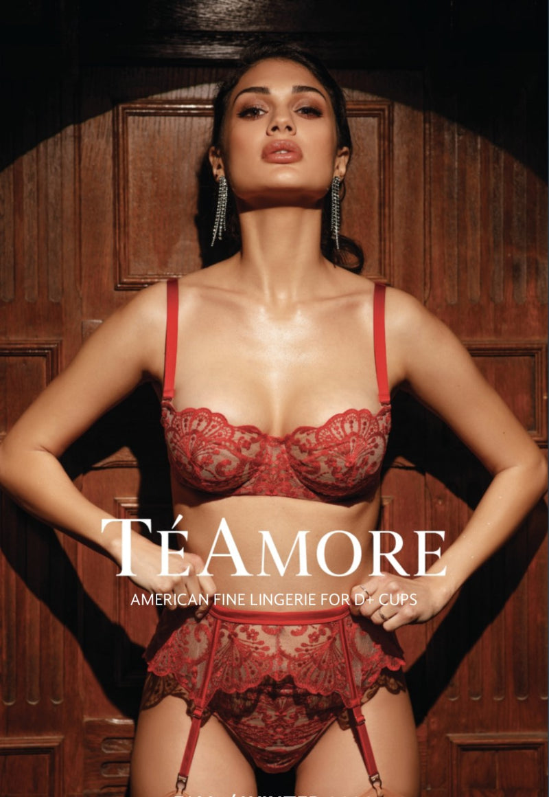 TéAmore Spotlight Embroidered Brief Red 31014