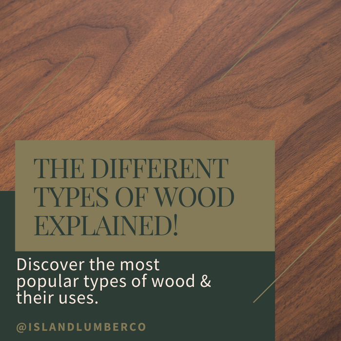 The Different Types of Wood Explained!