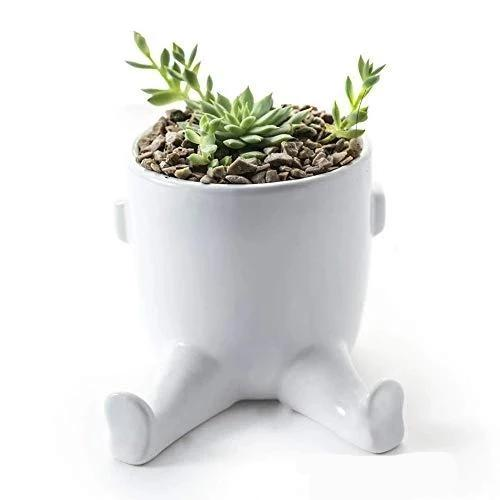 Small Succulent Planter with Legs