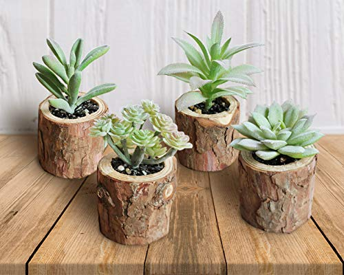 Mini Realistic Faux Succulents (set of 4)