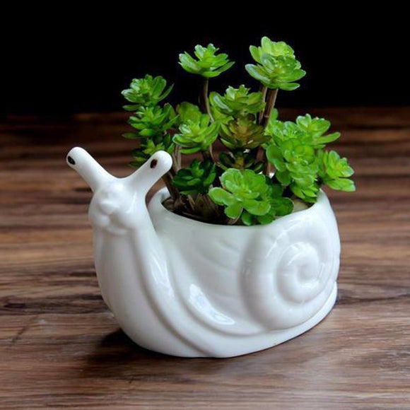 Snail Flower Pot Planter