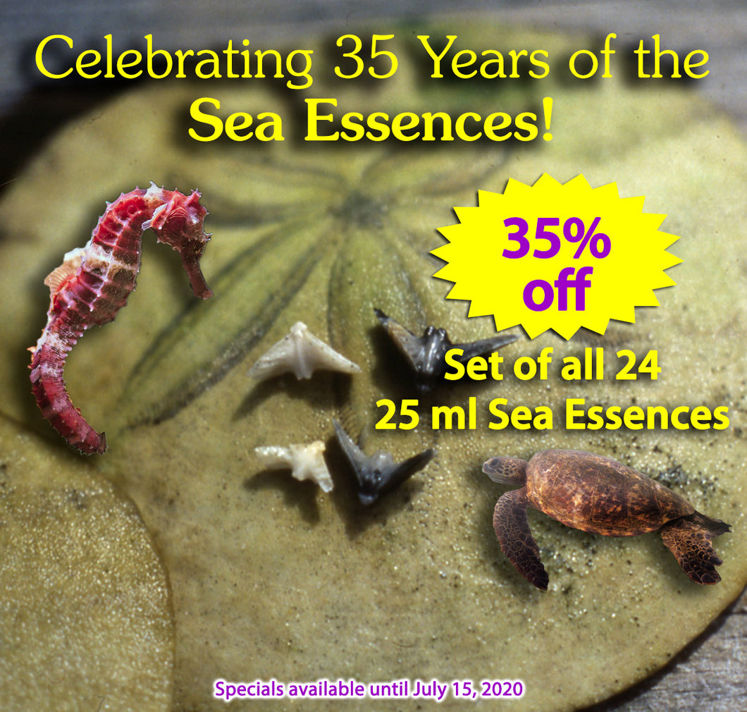 Sea Essences 25ml - Set of all 24