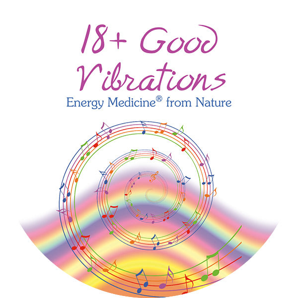 18+ Good Vibrations Booklet