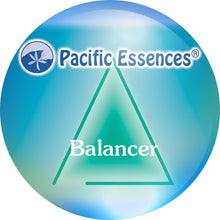 Load image into Gallery viewer, Balancer Essence