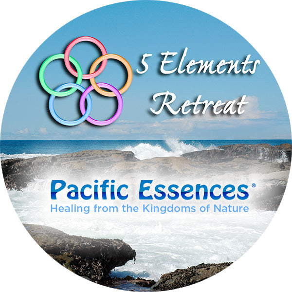 Five Elements Retreat