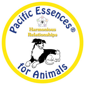Harmonious Relationships for Animals
