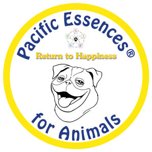 Return to Happiness for Animals