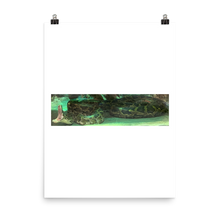 Load image into Gallery viewer, SNAKE | Poster