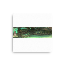 Load image into Gallery viewer, SNAKE | Canvas