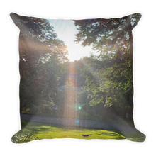 Load image into Gallery viewer, SUNNY DAY | Premium Pillow