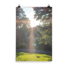 Load image into Gallery viewer, SUNNY DAY | Poster