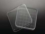 PETRI DISH 100X100X15MM WITH GRID