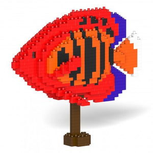 Jekca Flame Angelfish - Sculptor series