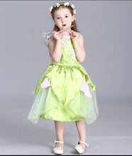 Load image into Gallery viewer, 2018 New Tinkerbell princess Woodland Fairy Dress Cosplay Costume Girls Green Fairy Dress for 3-10Y kids (without wing)