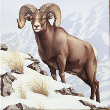 Load image into Gallery viewer, 2014 - Canada - $100 - Rocky Mountain Bighorn Sheep - Matte Proof
