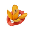 179A Deluxe Mango Cutter Chopper Slicer Machine