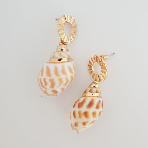 Gold Plated and Natural Shell Drop Earrings