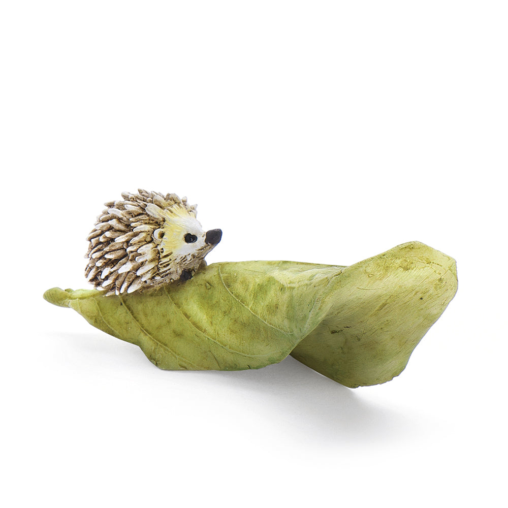 Hedgehog on a Green Leaf