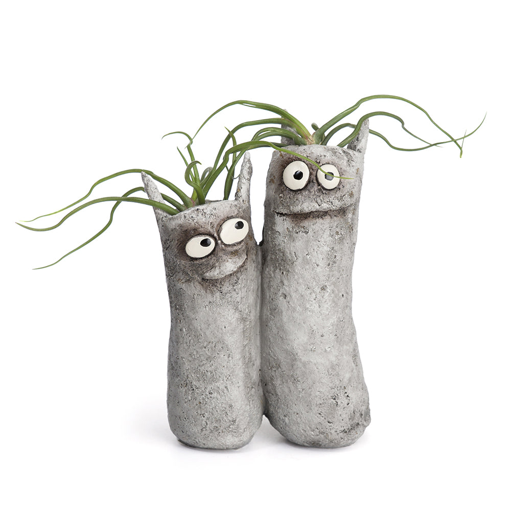 Sisters the Cats Double Planter