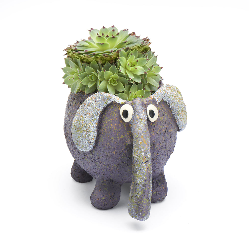BoBo the Elephant Planter