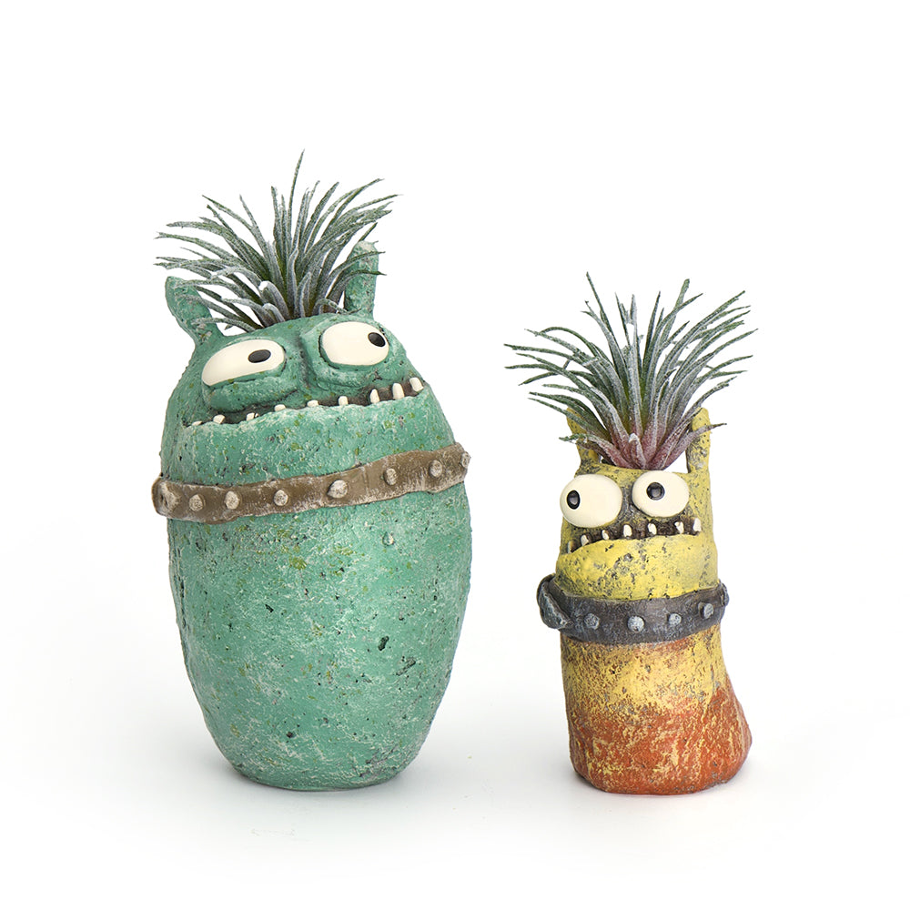 Spiky Sweeties Planter Set with Plants (4 Pieces)