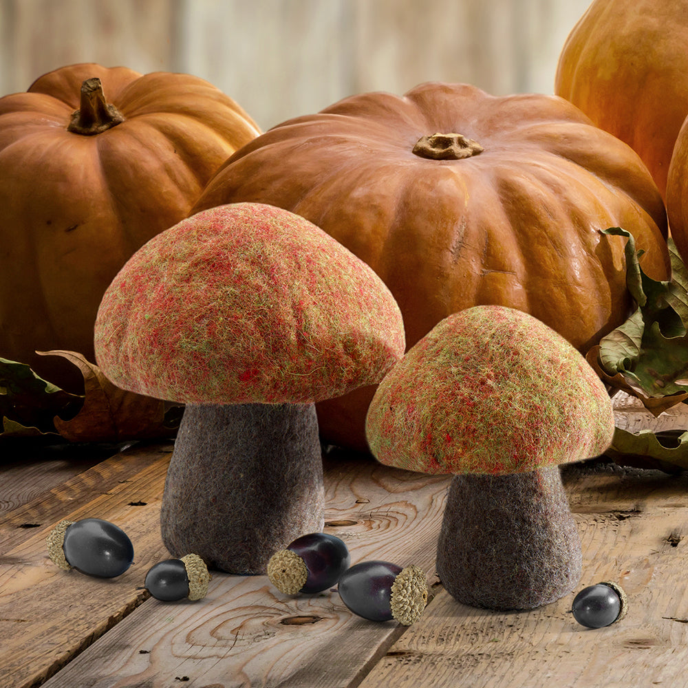 Red Bolete Mushroom Set (2 Pieces)